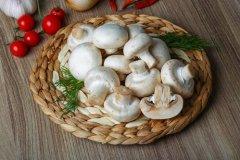 农业气象站在蘑菇大棚管理中的作用